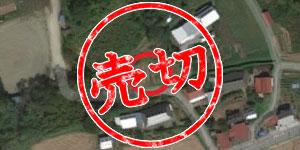 CA-1 栃木(売りきれました)